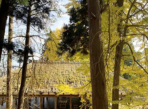 宮熊野神社